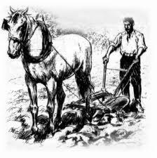 Formation en sommellerie image représentant un labour au cheval