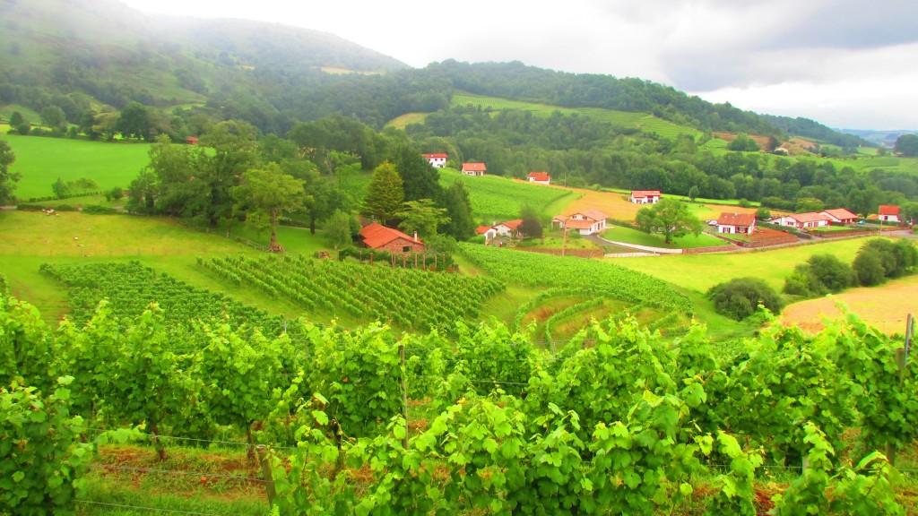 laccorddivin-vignes-irouleguy-Arretxea